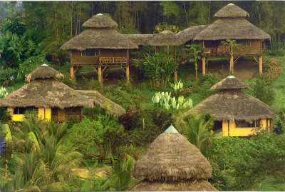 Arasha Ecuador's Tropical Forest Resort & Spa 1