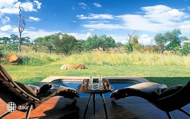 Sabi Sabi Earth Lodge 3