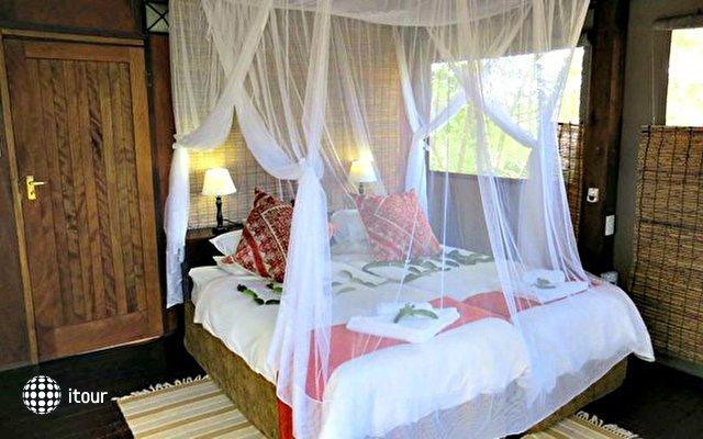 Nkambeni Safari Camp 4