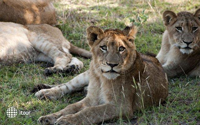 Lion Sands Tinga Lodge 8