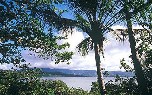 Dolphin Island Fiji 1