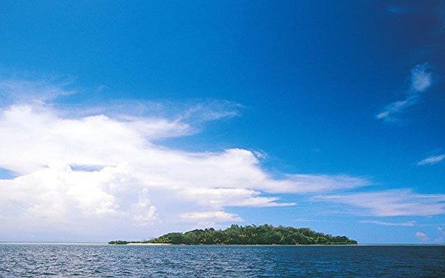 Dolphin Island Fiji 3