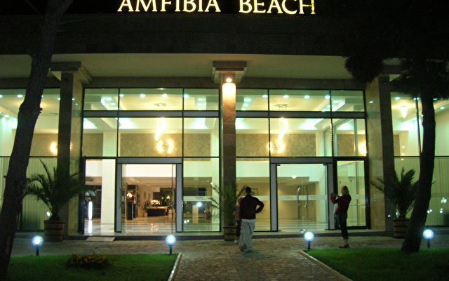 Amfibia 1