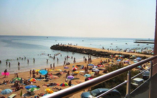 Sunny Bay 1