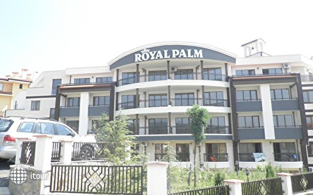 Royal Palm 3