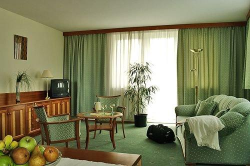 Hotel Palace Heviz 3