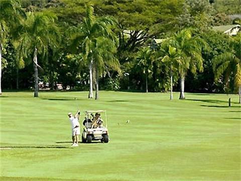 Novotel Palm Cove Resort 4