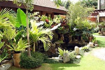 Boracay Tropics 10