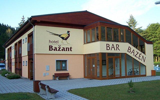 Bazant 1