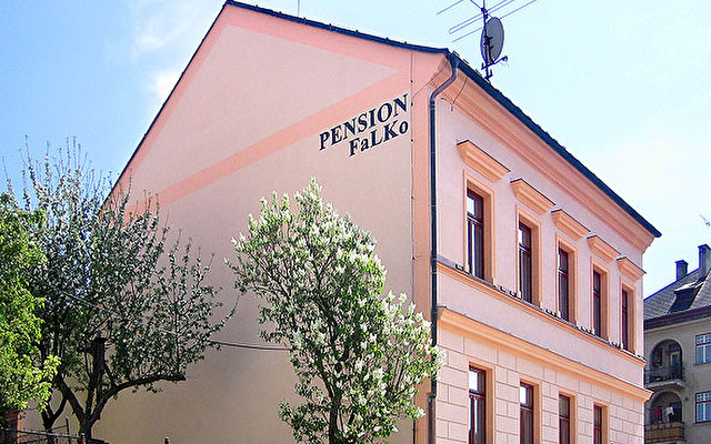 Falko Pension 5