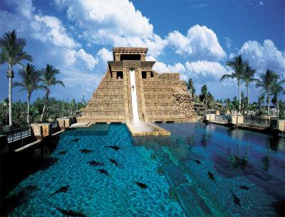 Atlantis Resort Paradise Island 5