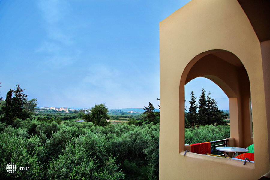 Vardis Olive Garden 3