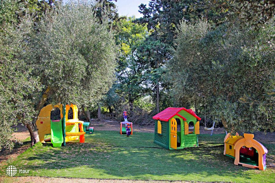 Vardis Olive Garden 4