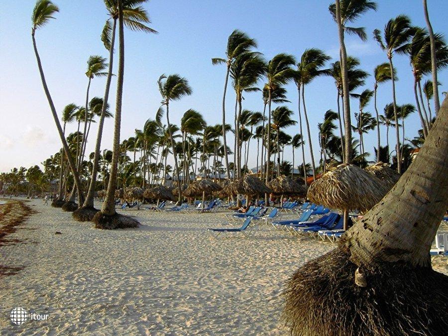 Dreams Palm Beach 10