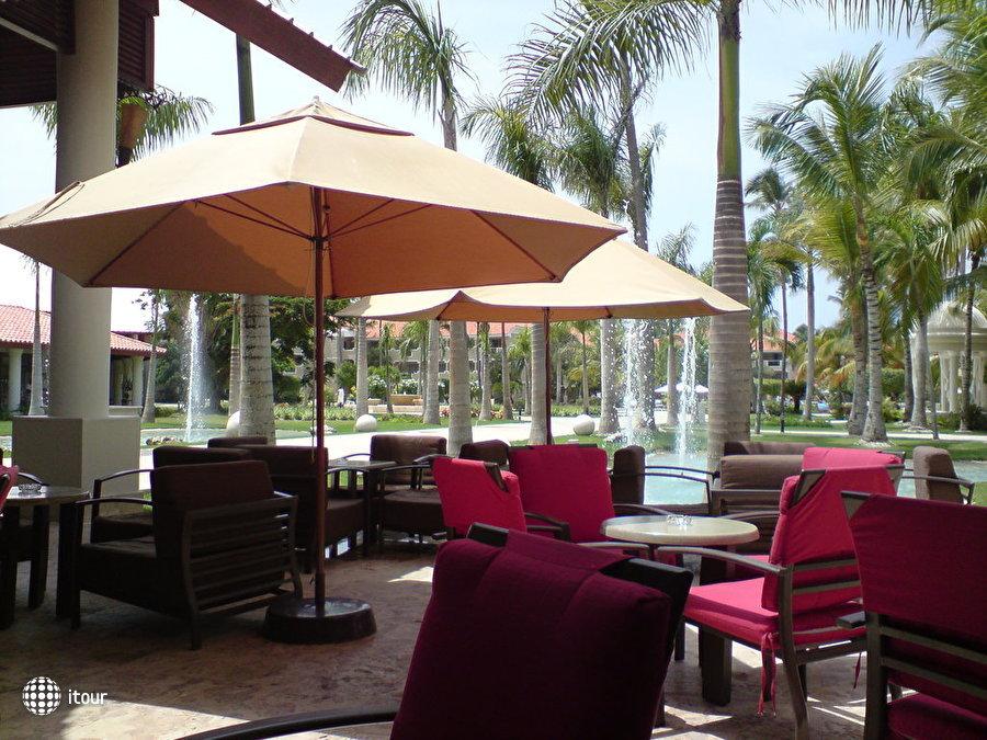 Dreams Palm Beach 3