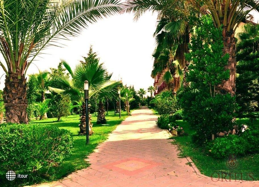 Orfeus Park 6