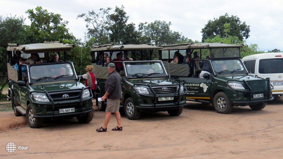 Nkambeni Safari Camp 6